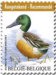 Postzegels België 2015 Aangetekend, De Slobeend 1 juni