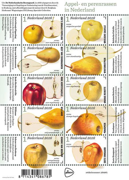 Appel- en perenrassen in Nederland