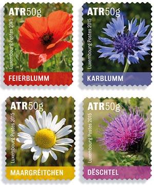 bloemen Luxemburg 2015