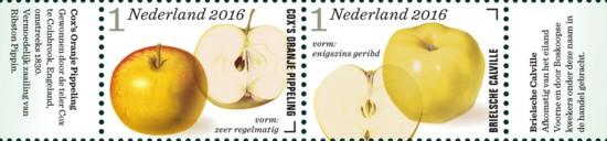 Appel- en perenrassen in Nederland 1e rij