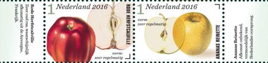 Appel- en perenrassen in Nederland 3e rij