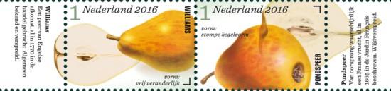 Appel- en perenrassen in Nederland 4e rij