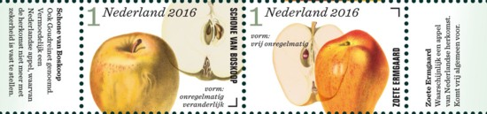 Appel- en perenrassen in Nederland 5e rij