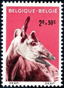 belgie-1184