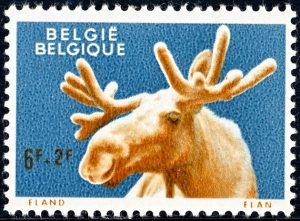 belgie-1187