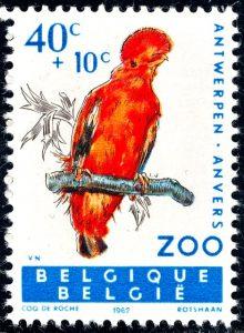 belgie-1216