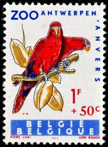 belgie-1217