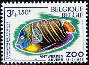 belgie-1471