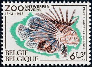 belgie-1472