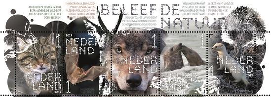 Beleef de natuur: zoogdieren