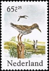 NVPH 1303 - Zomerzegels weidevogels 1984 Tureluur