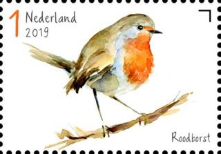Tuinvogels in Nederland - Roodborst