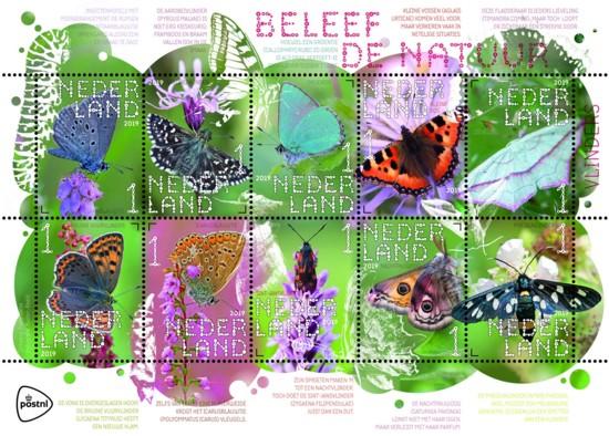 Vel Beleef de natuur - vlinders