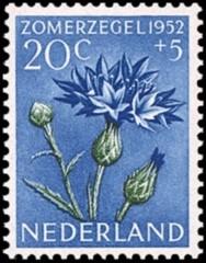 NVPH 587 - Zomerzegel 1952 - korenbloem